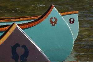 Canvas Boat Top Paint